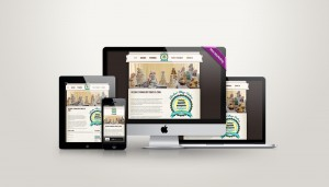 Web Design Meath - Max Marketing Print & Design Ltd Web Design